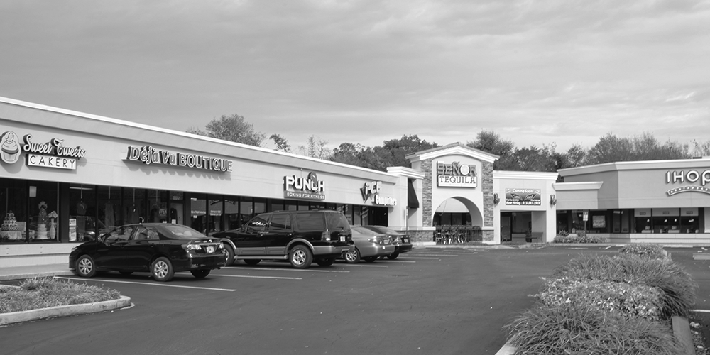 Lease retail space in Carrollwood